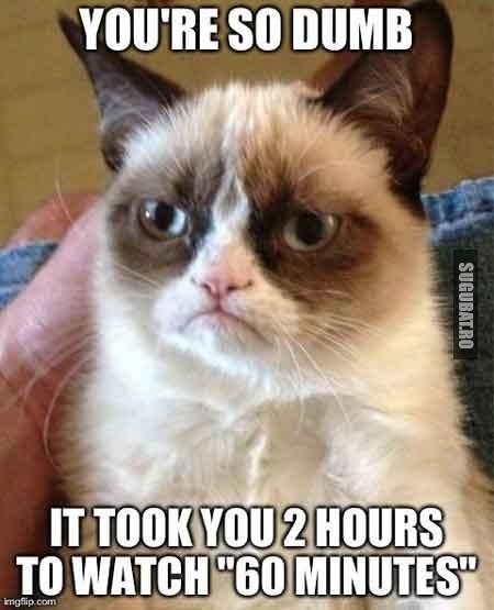 Grumpy Cat: Esti prost daca te uiti la 60 minutes timp de doua ore