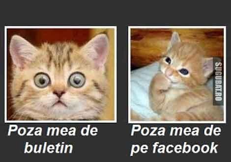 Poza de buletin vs Poza de pe Facebook
