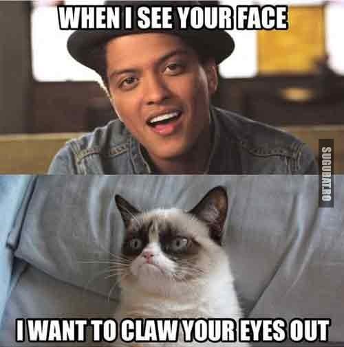 Grumpy Cat: Cand iti vad fata