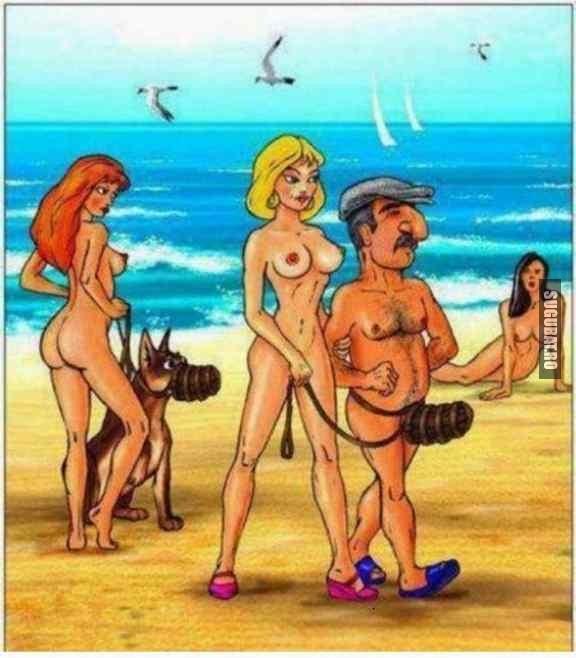Atentie, caine rau la nudisti pe plaja!