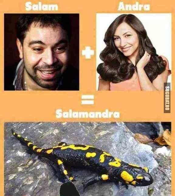 Deci asa s-a creat :)))