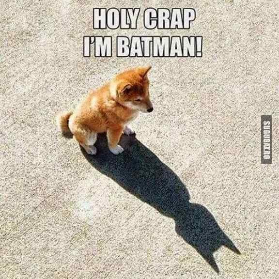 Oauu...sunt Batman :))