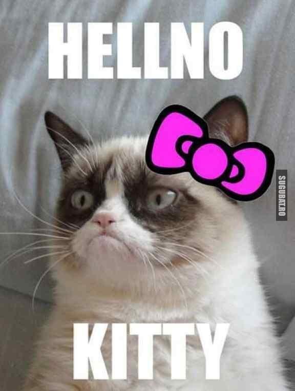Daca Grampy Cat ar fi fost un brand, ar fi fost Hellno Kitty