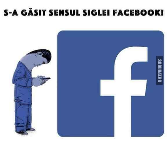 Sensul siglei facebook.