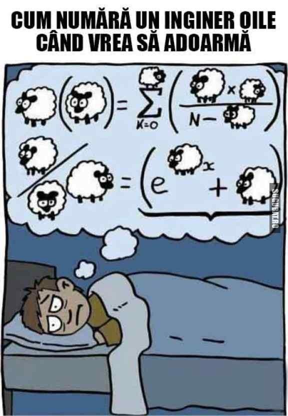 Cum numara un inginer oile cand vrea sa adoarma