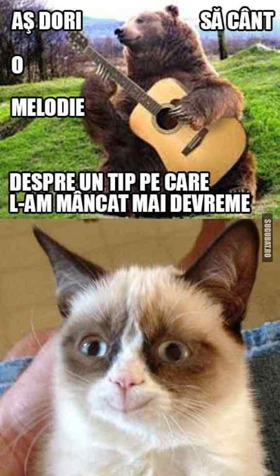 As dori sa cant o melodie (Grumpy Cat)