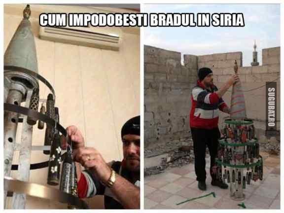 Cum impodobesti bradul in Siria
