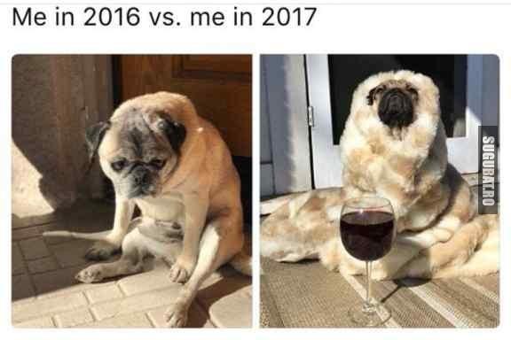 Eu in 2016 VS. Eu in 2017