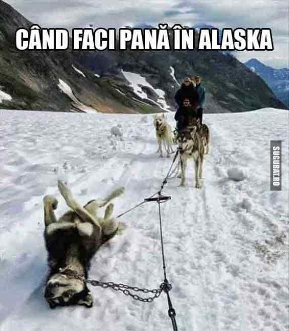 Cand faci pana in Alaska