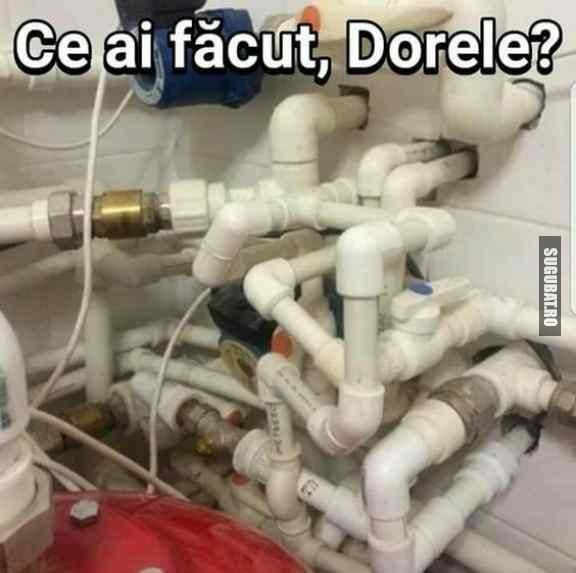 Ce ai facut, Dorele?
