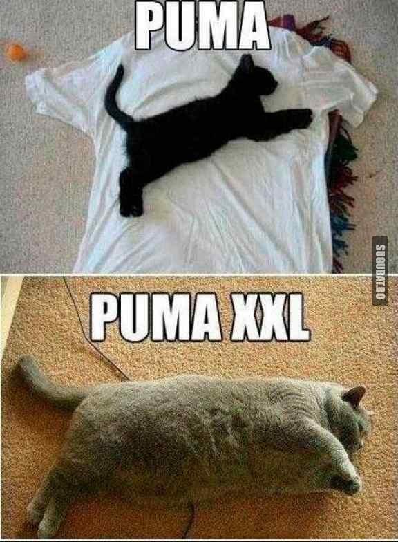 Puma XXL ca ti-e bun si la anu