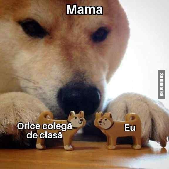 Mama și colegele de clasa