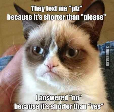 Grumpy Cat: Toti imi scriu plz pentru ca e mai scurt decat please