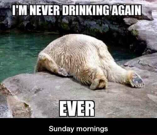 Diminetile de luni: nu o sa mai beau niciodata