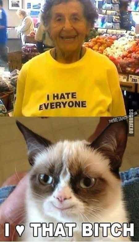 Grumpy cat: I love that bitch