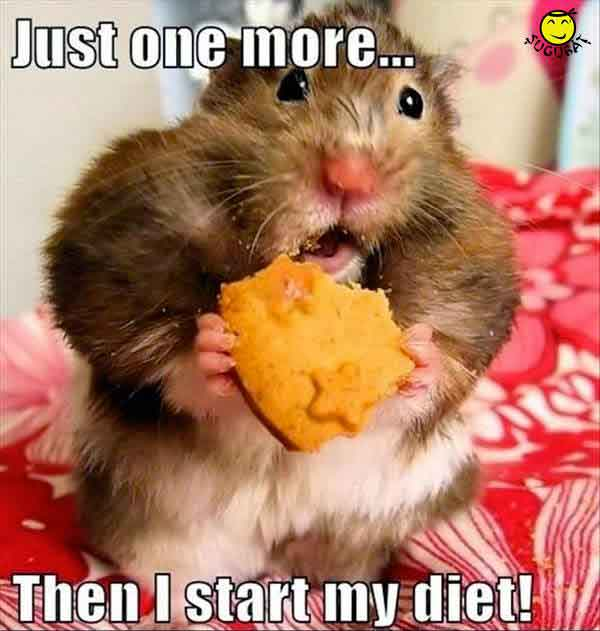 Inca una si apoi incep dieta